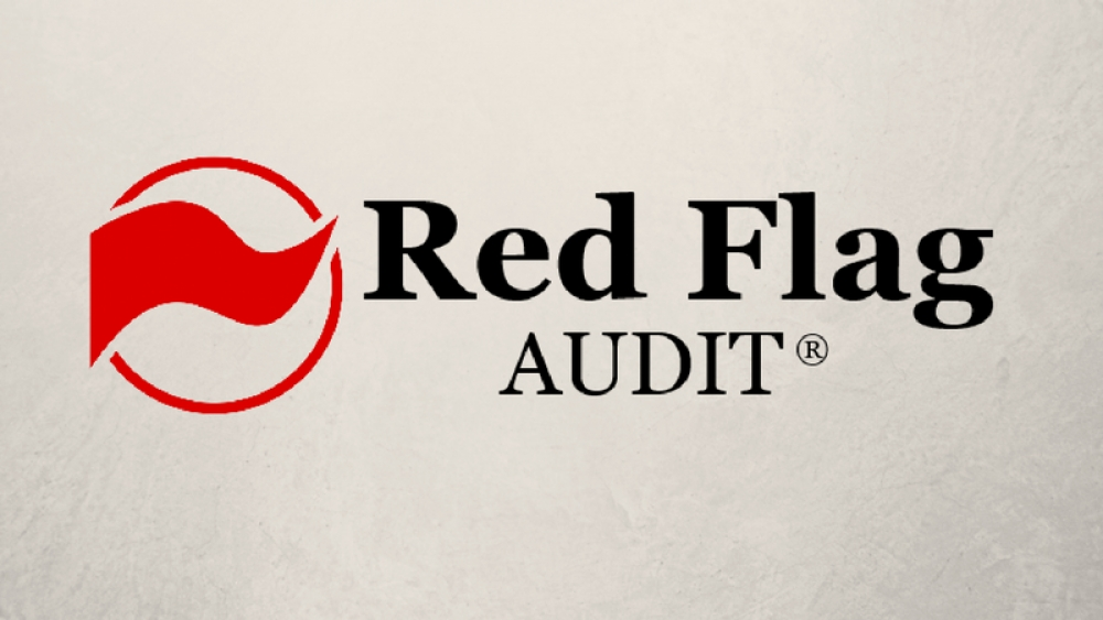 Financial Mistakes Saved by Our Red Flag Audit®